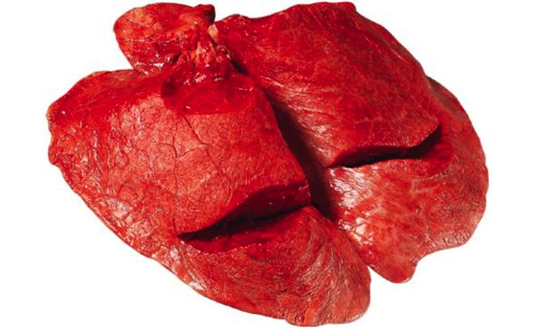 Fleisch Innereien (Lunge)